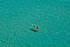 kayak-shark-before